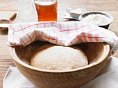Khorasan wheat dough in a wooden bowl covered with a tea towel