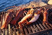 Grilled lobster on a barbecue by the sea