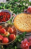 Almond cake, peaches and berries