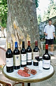 Salami and various bottles of red wine on a table under a tree