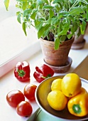 Vegetable, lemons and herbs on a window sill