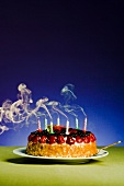 A birthday cake with blown out candles