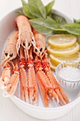 Scampi with salt and lemon
