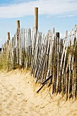 Old wooden fence in sand dunes
