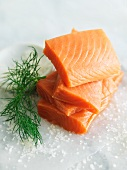 Raw Salmon on Wax Paper; Dill and Sea Salt