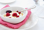 Bowl of Organic Yogurt with Cranberries, Raspberries, Blackberries and Agave Syrup