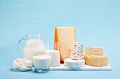 Verschiedene Milchprodukte (Käse, Joghurt, Quark und Milch) vor blauem Hintergrund