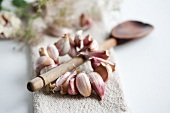 Wooden spoon with garland of garlic cloves