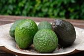 A plate of avocados