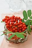 Rowan berries in a glass jar