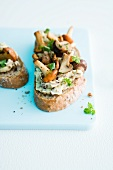 Slices of bread topped with mushroom butter and fresh mushrooms