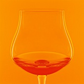 A glass of cognac in from of an orange background