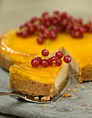Cheesecake with jelly and red currants, sliced