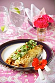 Chicken enchiladas with cucumber (Mexico)