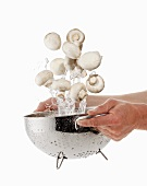 Mushrooms being washed in a sieve