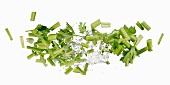 Celery with a water splash