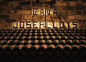 Cava stored in a wine cellar (Spain)