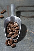 Coffee beans on a scoop