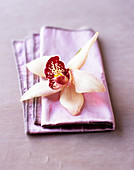 An orchid flower on a napkin