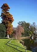 Parkanlage am Teich