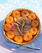 Apricot and rhubarb tart