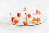 Rainier Cherries on a Glass Plate; White Background