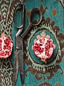 Pomegranates with rusty iron scissors