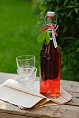 Bottle of home-made cranberry juice on wooden table