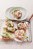 Crostini with smoked trout and with chicken-rocket cream