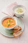 Cream of leek soup and tomato-mango soup