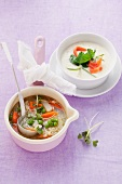 Cream of kohlrabi soup with smoked salmon and vegetable soup with rice