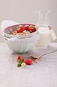 Muesli with fresh strawberries and milk