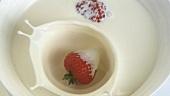 Erdbeere fällt in flüssige Sahne