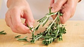 Picking rosemary leaves from stems