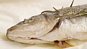 Sea bass baked in parchment