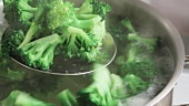 Brokkoliröschen mit einer Schaumkelle aus dem kochenden Wasser heben
