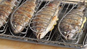 Trout grilled in the oven