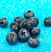 Blueberries on blue gravel