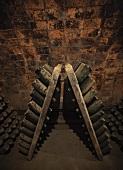 Dusty bottles in wine cellar