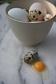 A broken quail egg next to a bowl with chicken and quail eggs