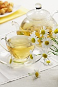Teacup and teapot with chamomile tea and fresh chamomile flowers