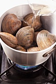 Pour white wine onto clams