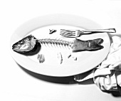 An Eaten Whole Branzino Fish on a White Plate with Fork; White Background