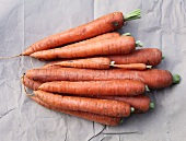 Organic carrots (seen from above)