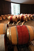 Barrels in a wine cellar (Boxwood Winery, Middleburg, Virginia, USA)