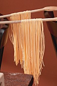 Home-made spaghetti hung up to dry