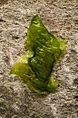 Deep-fried nettle leaf