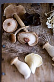 Assorted forest mushrooms on a wooden board