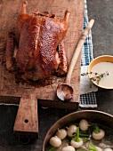 Roast duck with turnips