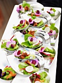 Appetizer with radishes, chanterelles and sugar snap pea blossoms